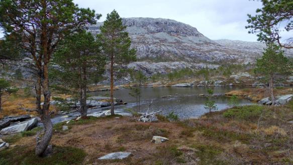 Teltplass i Lomsdalen (foto: Kjell Iver Johansen)