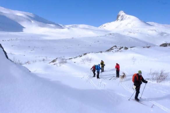 Toppturer mot Visttindan er en favoritt i Skjørlægda, i vinter har det vært hardt så Vistmannen er nok vanskelig å gå på, men Litlskardtind og Vistkjerringa kan by på flotte nedkjøringer (foto Carl Norberg)